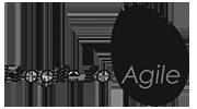 Fragile and Agile Logo Black and White