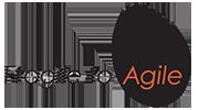 Fragile and Agile Logo